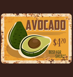 Avocado rusty metal plate fresh fruit vector