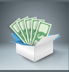 big box with money dolor vector image