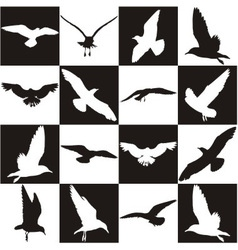 Black and white background with gulls vector