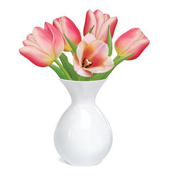 tulips flowers in white vase vector image