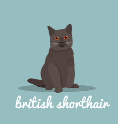 british shorthair with red eyes sitting on sky vector image vector image