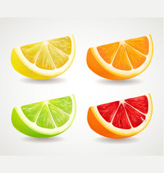 citrus fresh fruits set orange lime grapefruit vector image