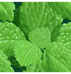 Seamless mint background vector