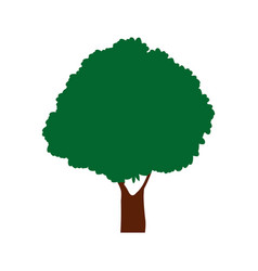 green tree natural foliage forest icon vector image
