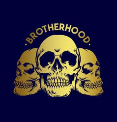 brotherhood gold skull vector image