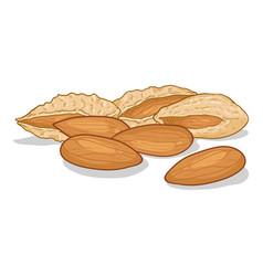 Cartoon pile almonds vector