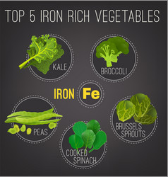 Iron-rich foods poster vector