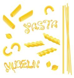 noodles pasta italian food vector image
