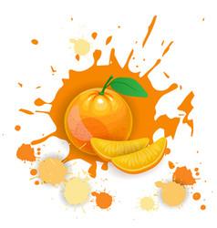 Orange fruit logo watercolor splash design fresh vector