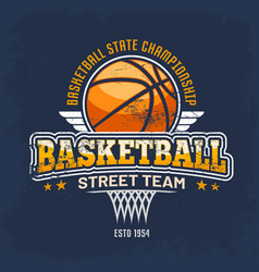 sport clothing sign with ball for streetball team vector image