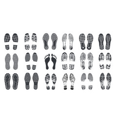 footprint steps barefoot sneaker and shoes vector image