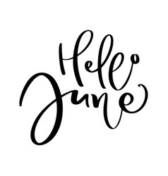 hand drawn typography lettering text hello june vector image