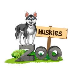 Huskies standing on zoo sign vector