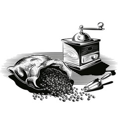 Lots of roasted coffee opened and an old coffee vector