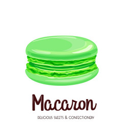 mint macaron vector image