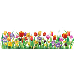 arrangement with multicolor spring flowers vector image