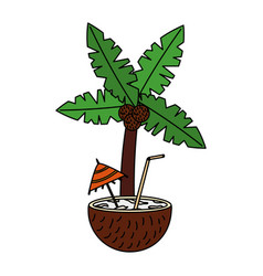 coconut cocktail palm tropical summer vector image
