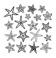 Doodle set of starfishes vector