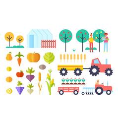 Harvesting process vegetables vector
