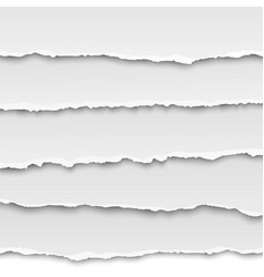 Oblong layers of torn paper vector