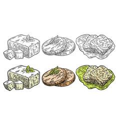 set vegan and vegetarian food tofu seitan vector image