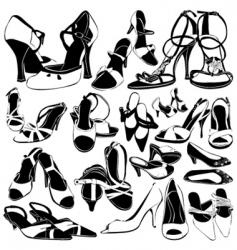 women shoes detail vector image