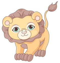 Baby Lion vector