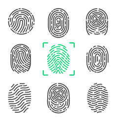 Collection of fingerprints on vector