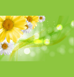 Colorful naturalistic beautiful 3d chamomile vector