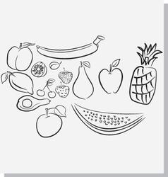 Fruits sketch vector