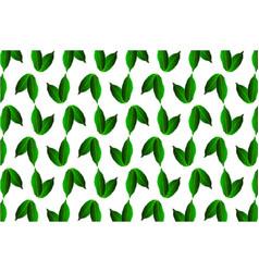 Green leaf chestnut on white background vector
