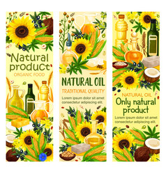 Natural organic oil of corn seed extra virgin oil vector