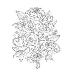 Roses coloring book for adults vector image
