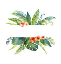 Watercolor banner tropical leaves and vector
