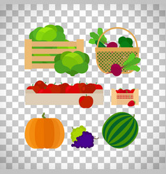 farm baskets with vegetables and fruits vector image