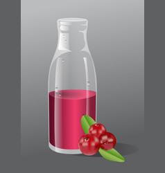 cranberry juice vector image vector image