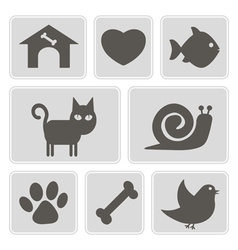 monochrome icons with pets vector image vector image