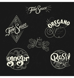 Spice logo set in vintage style Retro hand drawn vector image