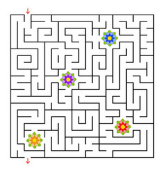 A square labyrinth collect all the flowers and vector