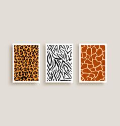 animal print texture background set vector image