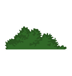 Bush leaves isolated vector