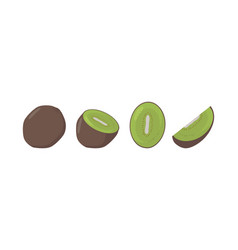 fresh kiwi fruits in different condition vector image