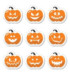 Halloween pumkin orange icons set vector image