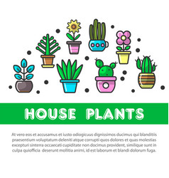 house plants in flower pots decoration flat vector image