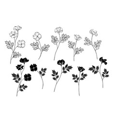 Monochrome california poppy vector