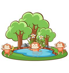 scene with monkeys in park vector image