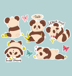 set cute pandas stickers with captions vector image