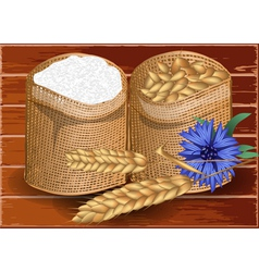 Wheat and flour vector image vector image