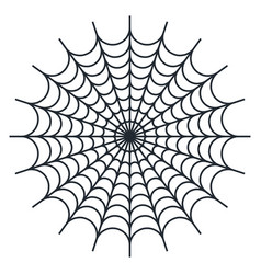 spider web on white backgroun vector image