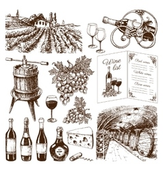 Traditional vinery production hand drawn vector image